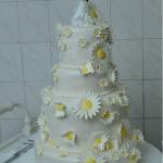 DRAGANA radnja za izradu torti i kolača
